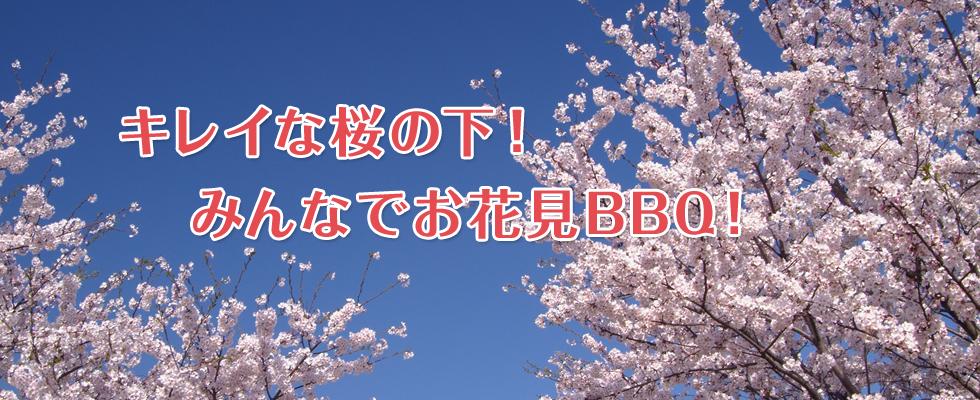 キレイな桜の下!みんなでお花見BBQ