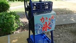 超~真夏の服部緑地 公園